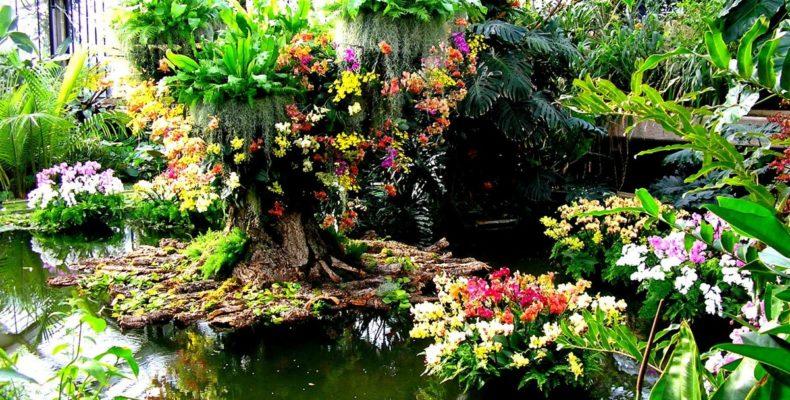 Сады Королевского садоводческого общества Уизли