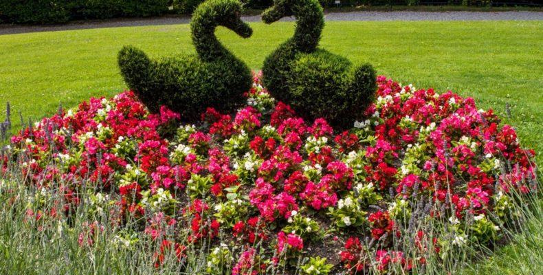 ботанический сад Виллы Карлотта 4