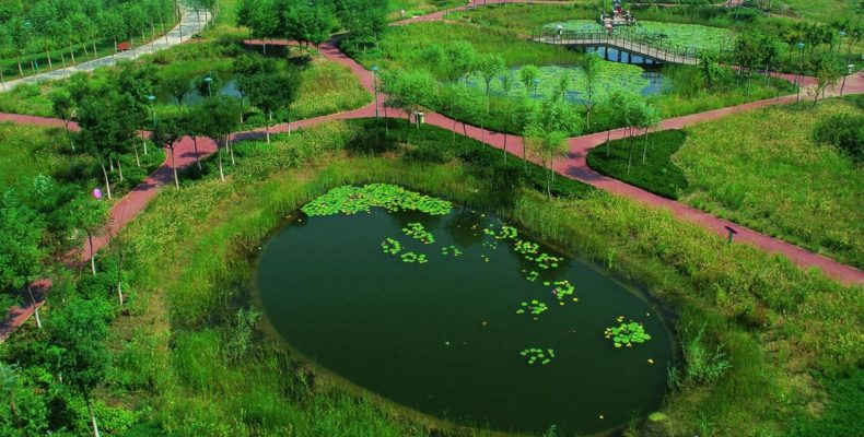 Qiaoyuan Wetland Park