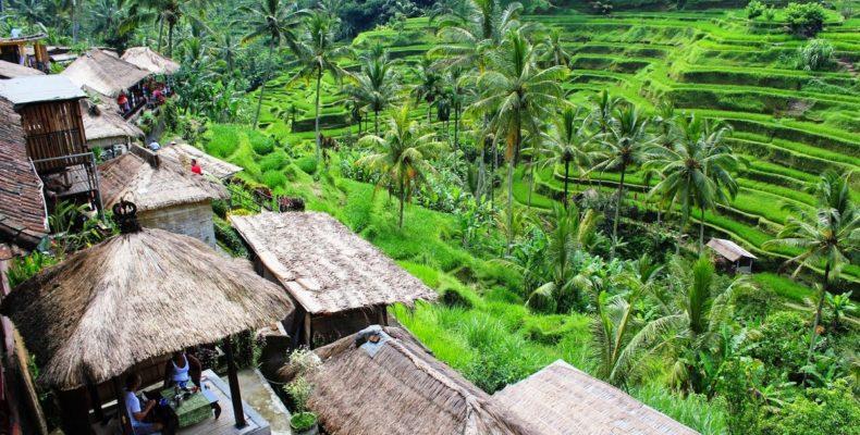 Романтика на Гили (Бали) 5