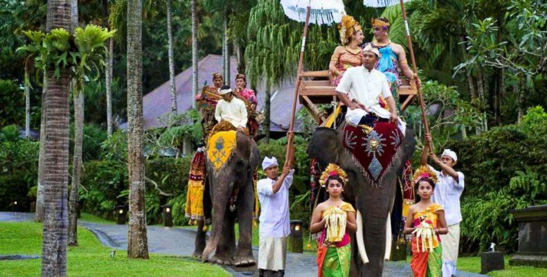 Свадьба на слонах 2