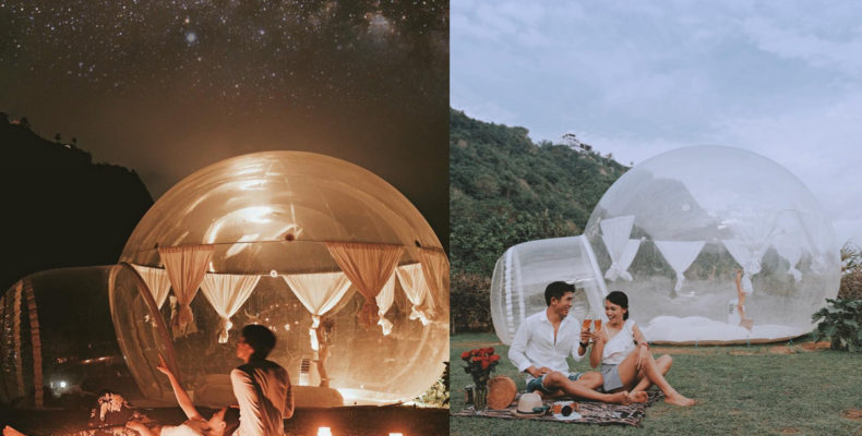 Тропическая свадьба 4