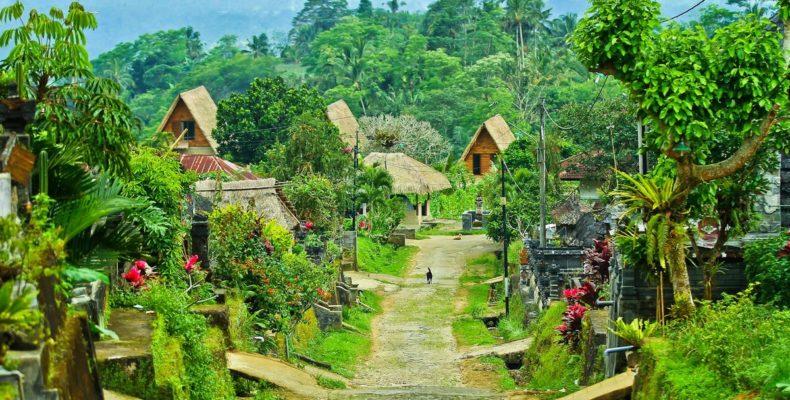 Тур по Бали 2
