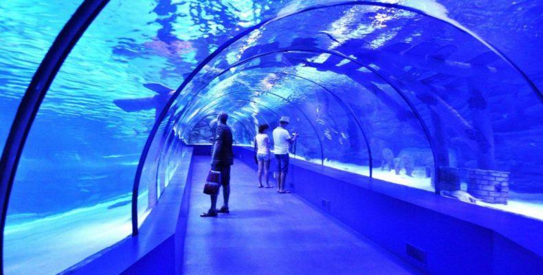 пещера «Океанариум в Анталии 3