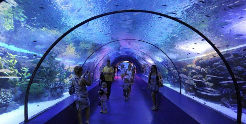 пещера «Океанариум в Анталии 4