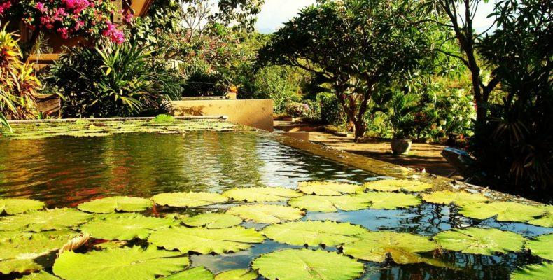 Zen Resort Bali 1