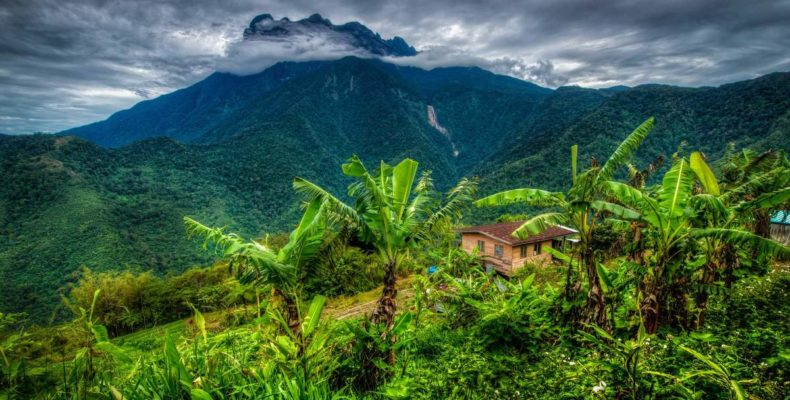 Заповедными тропами Борнео 4