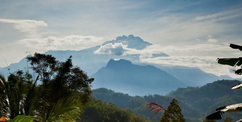 Заповедными тропами Борнео 5