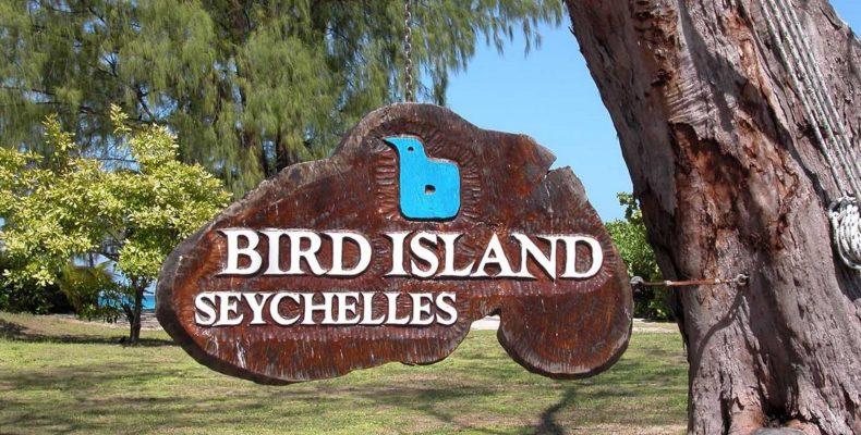 Bird Island Seychelles 9