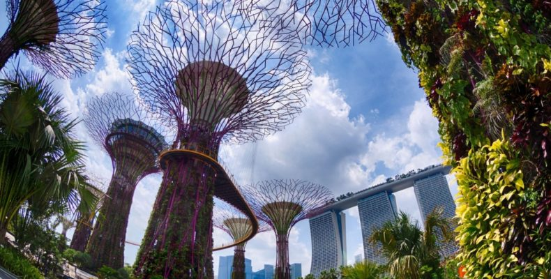 сингапур 4