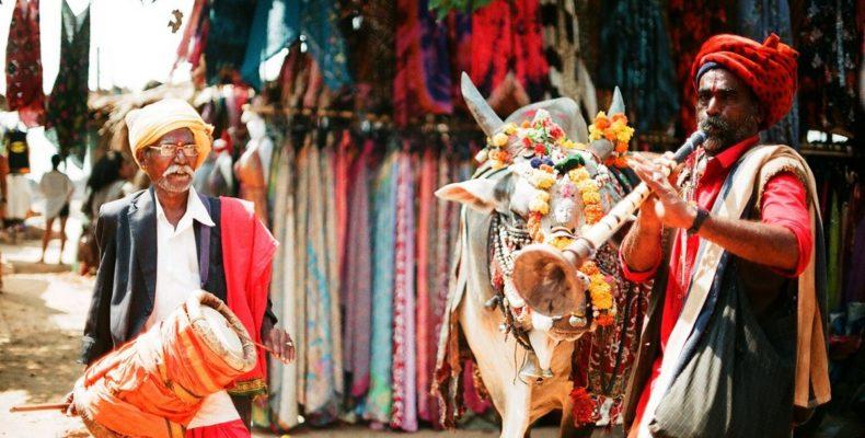 туры в индию 1