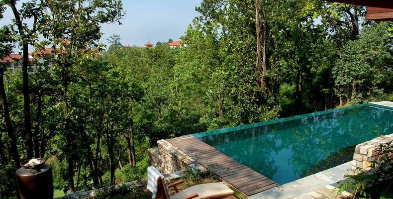 Ananda in Himalaya 5