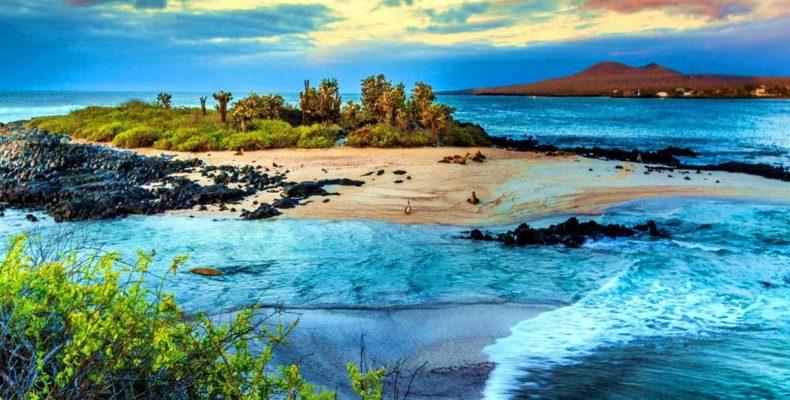 галапагосские острова 8
