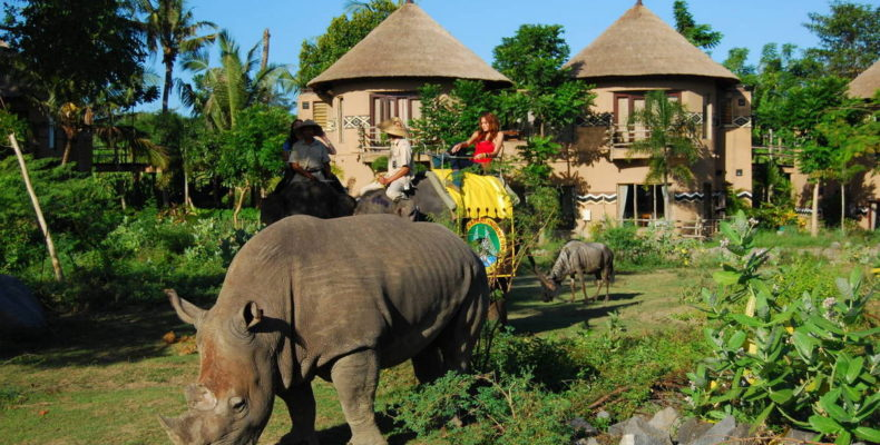 Mara River Safari Lodge 4