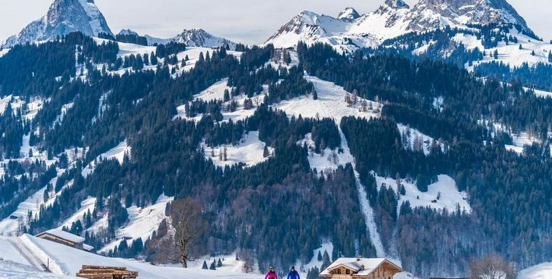 Park Gstaad 2