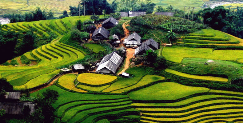 вьетнам 4