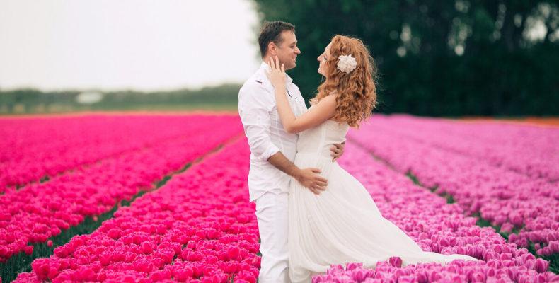 свадьба в нидерландах 1