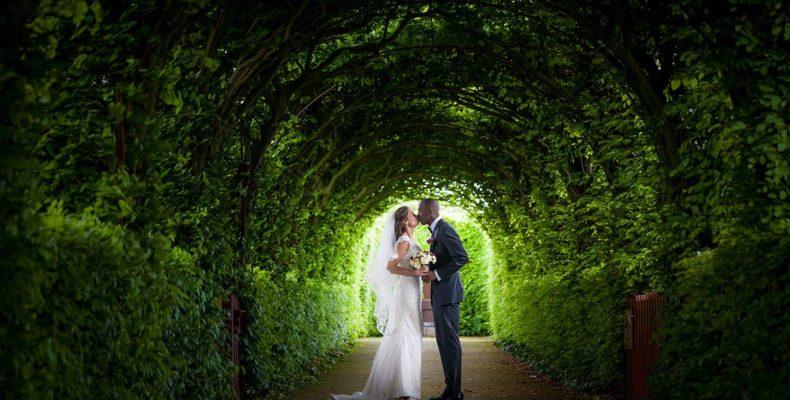 свадьба в нидерландах 2